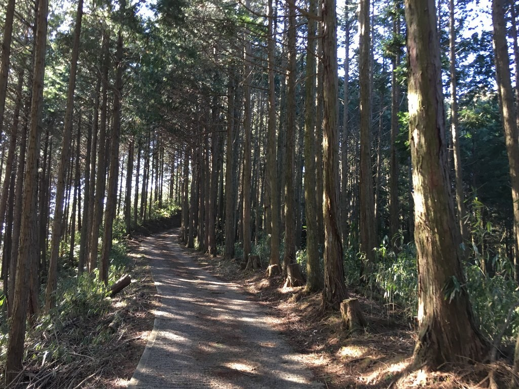 高倉山 神武東征 (23)