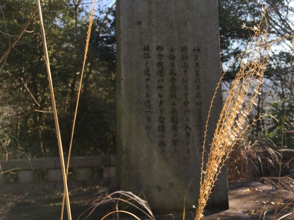 孔舎衛坂 (84)