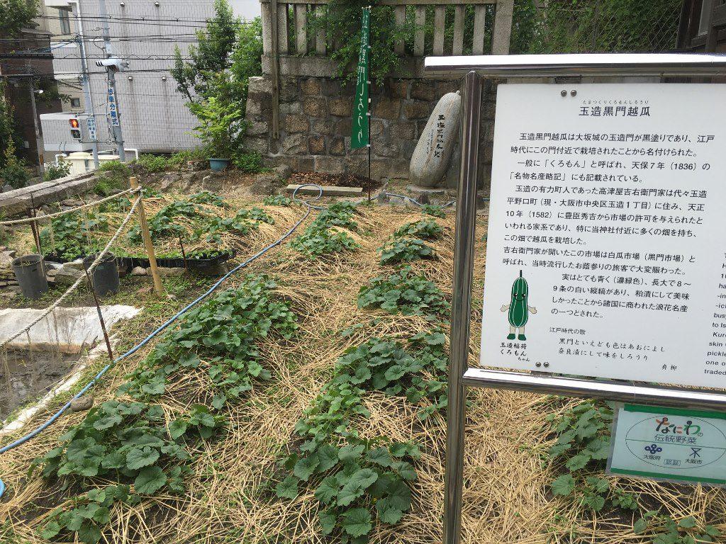 玉造稲荷神社 (55)