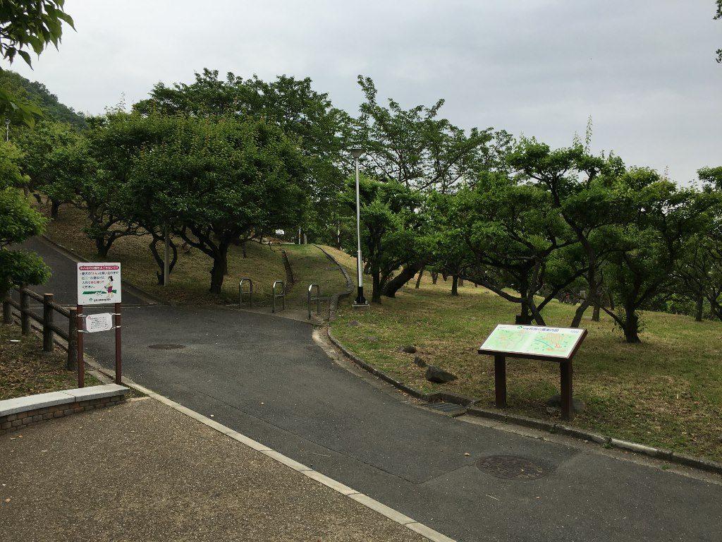 枚岡神社 (44)