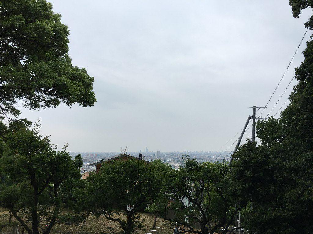 枚岡神社 (47)