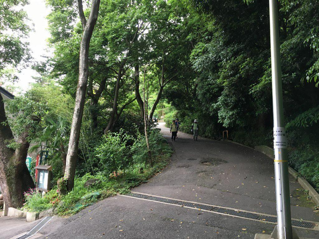 枚岡神社 (66)