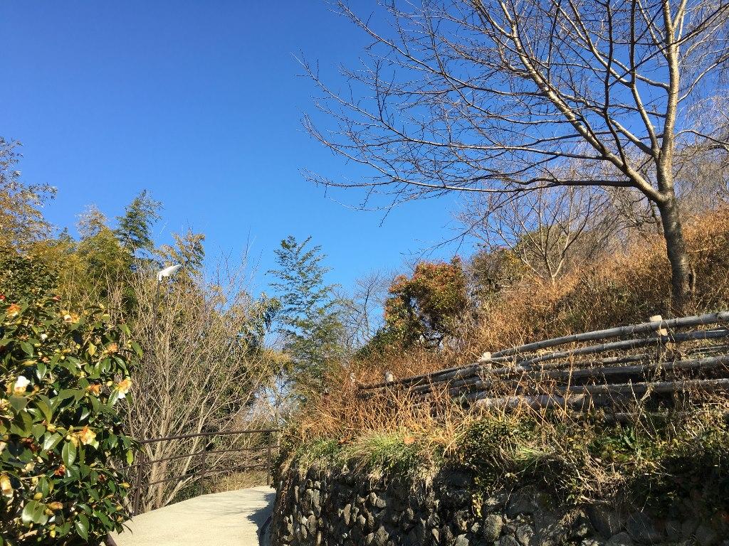 久延彦神社 (5)