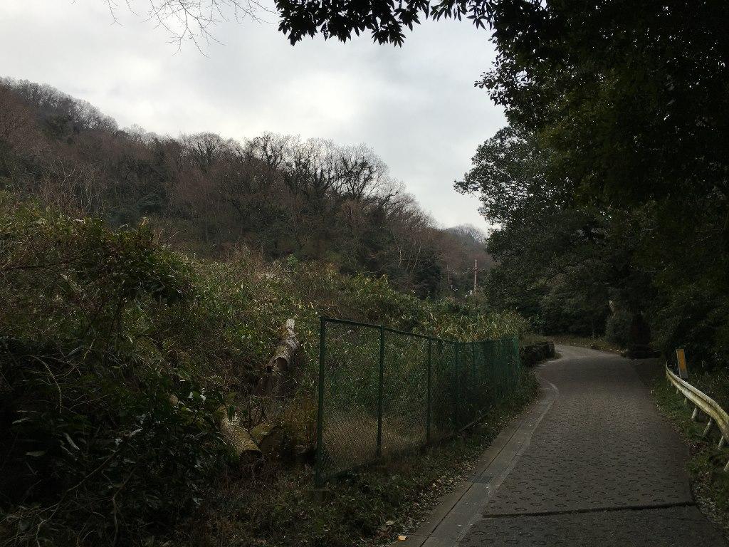 暗峠 孔舎衛坂 (17)
