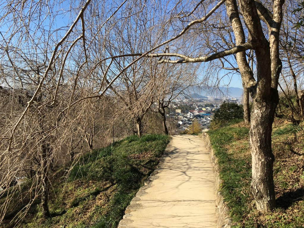 久延彦神社 (2)