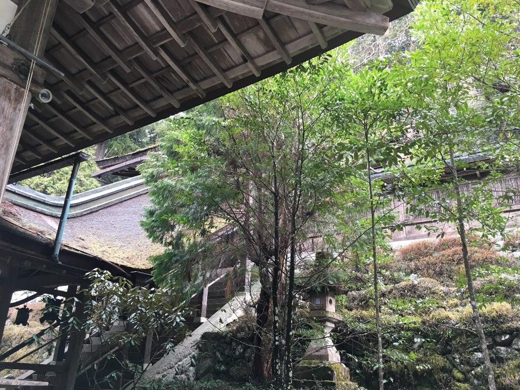 丹生川上神社 (119)