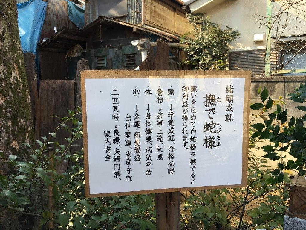 熊野神社@川越 (39)