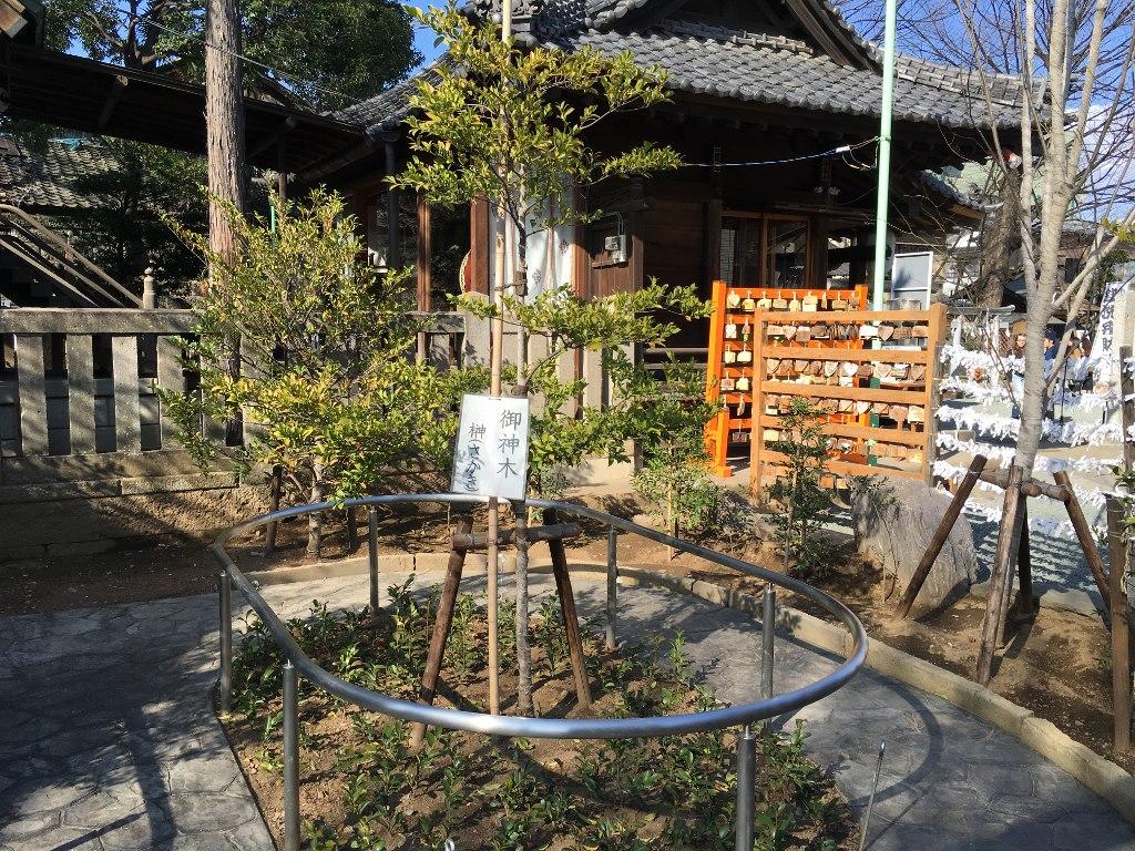 熊野神社@川越 (24)