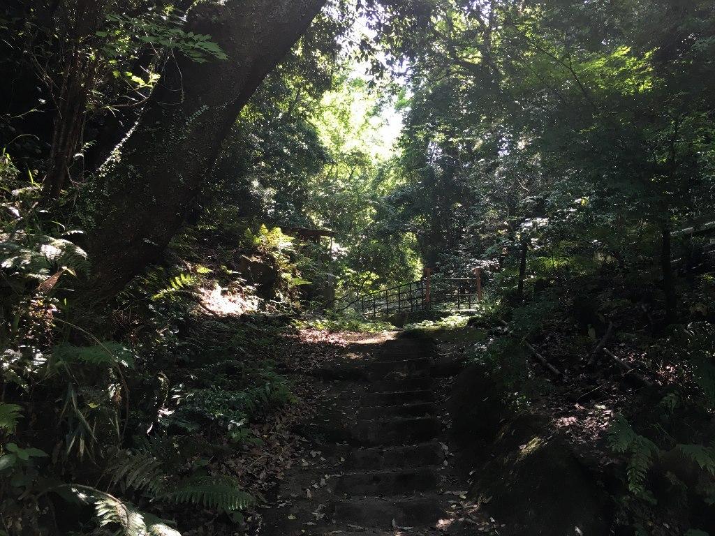 天照大神高座神社と岩戸神社 (91)