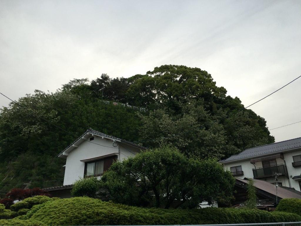 旭山神社 (2)