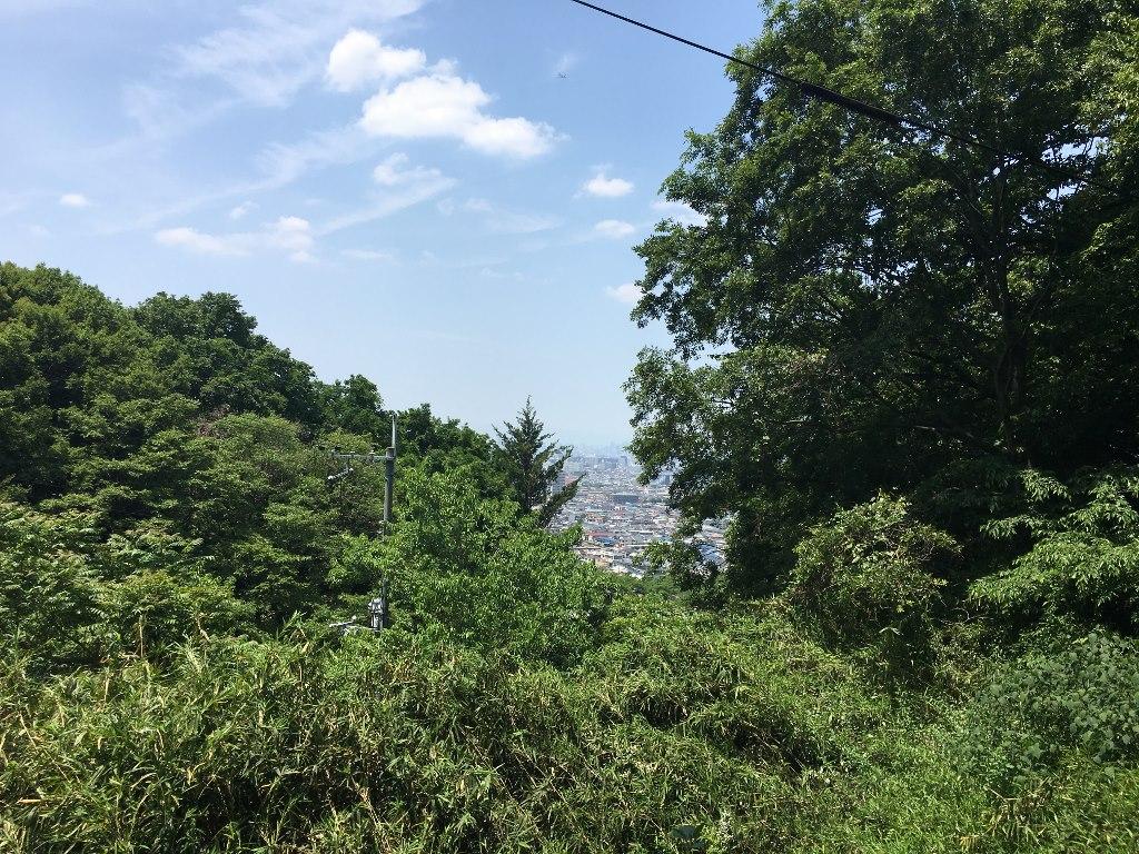 天照大神高座神社と岩戸神社 (175)