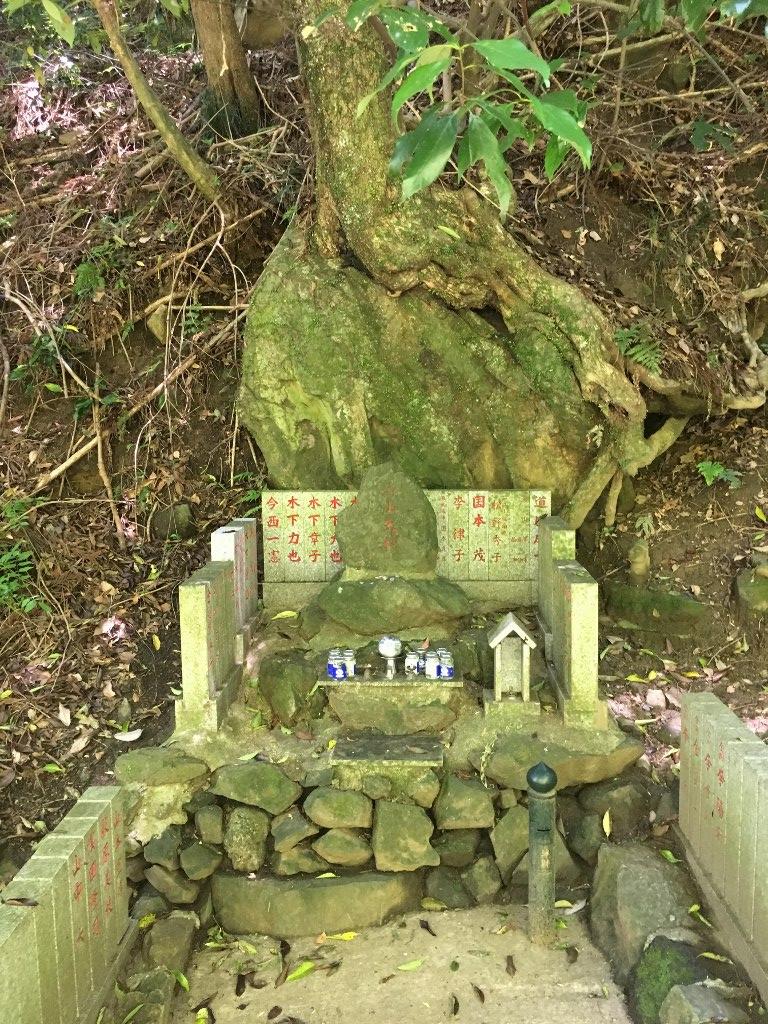 天照大神高座神社と岩戸神社 (110)