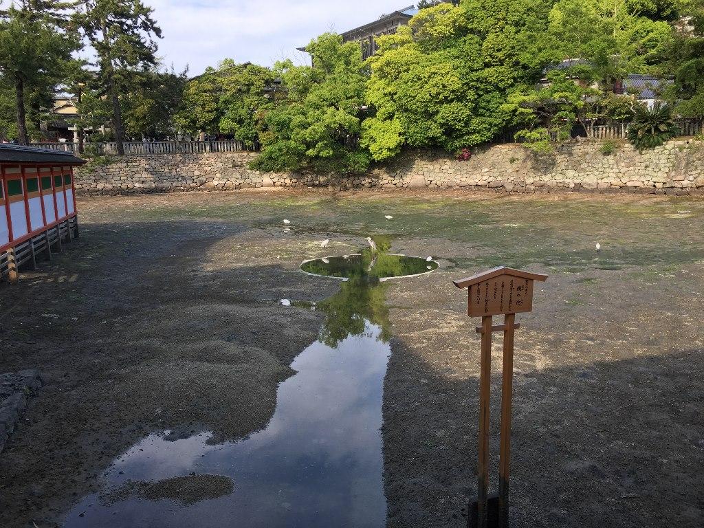 厳島神社@厳島(宮島) (49)