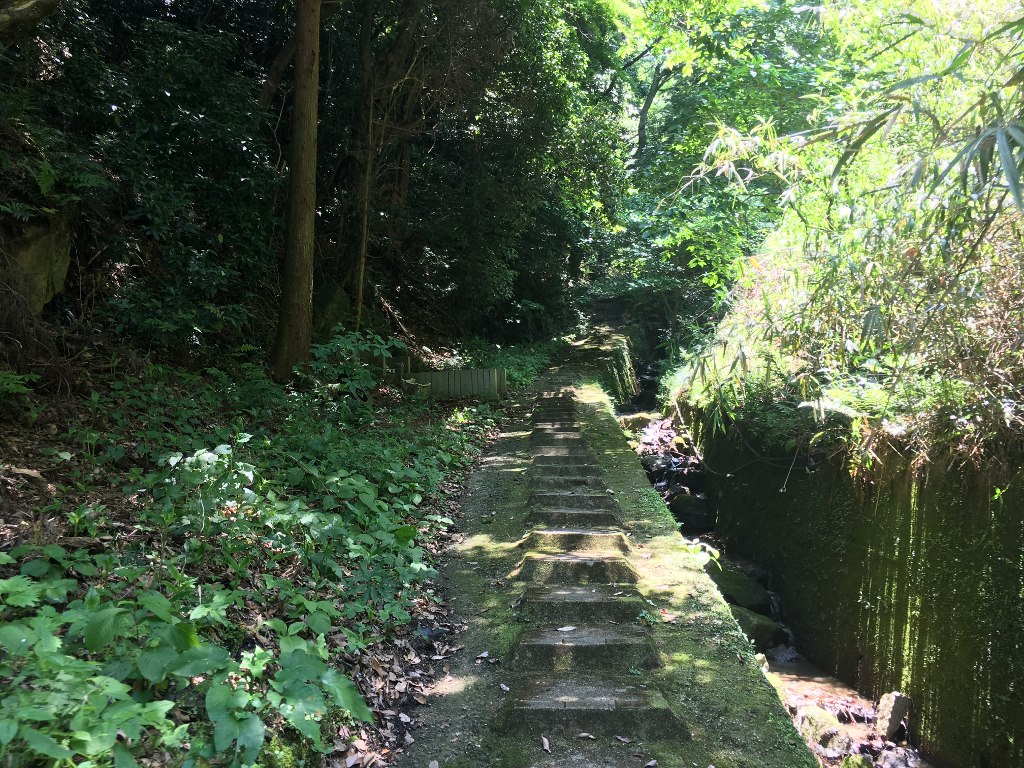 天照大神高座神社と岩戸神社 (88)