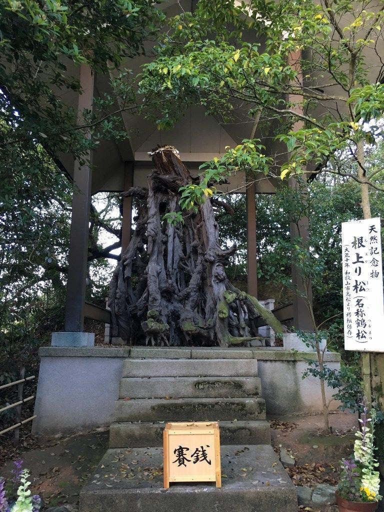 玉津島神社 (13)
