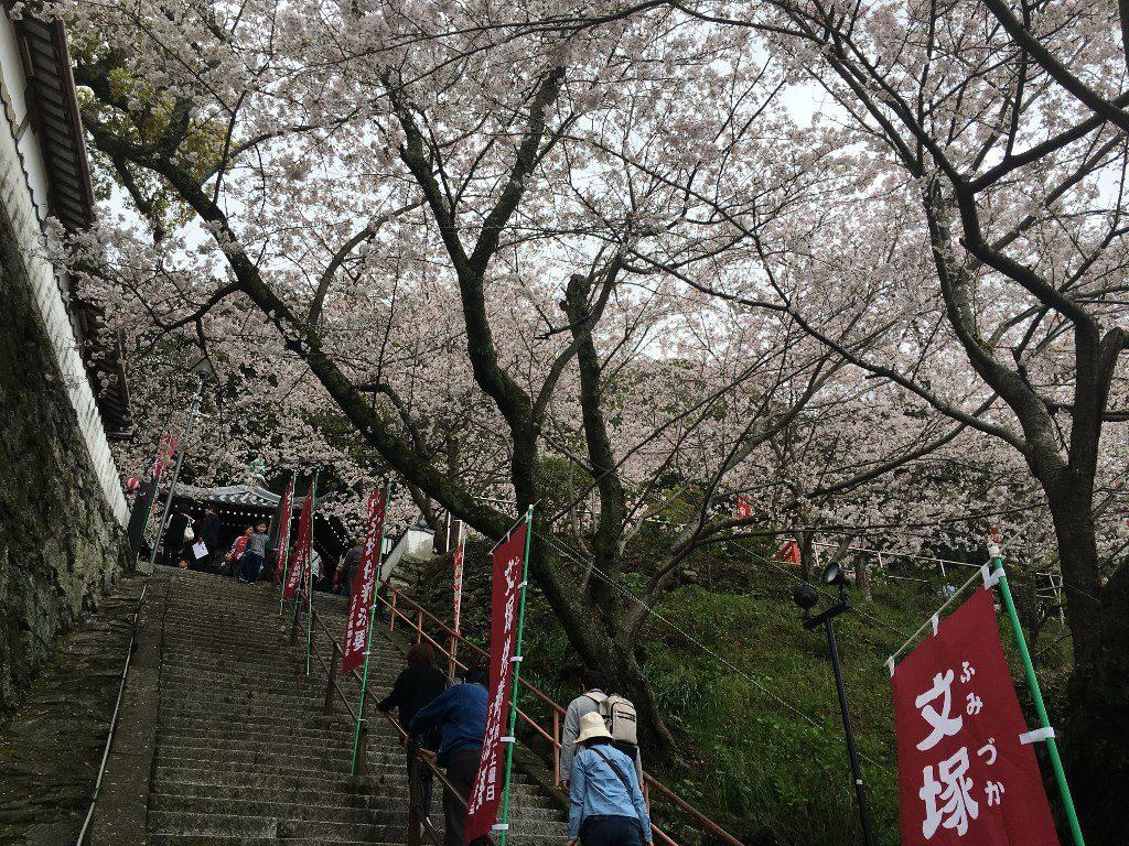 紀三井寺 (18)