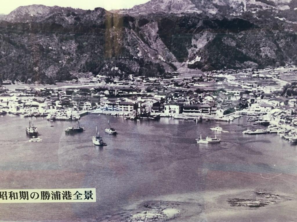 ホテル浦島  (96)