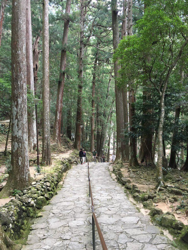 那智の大滝 (85) (1024x768)