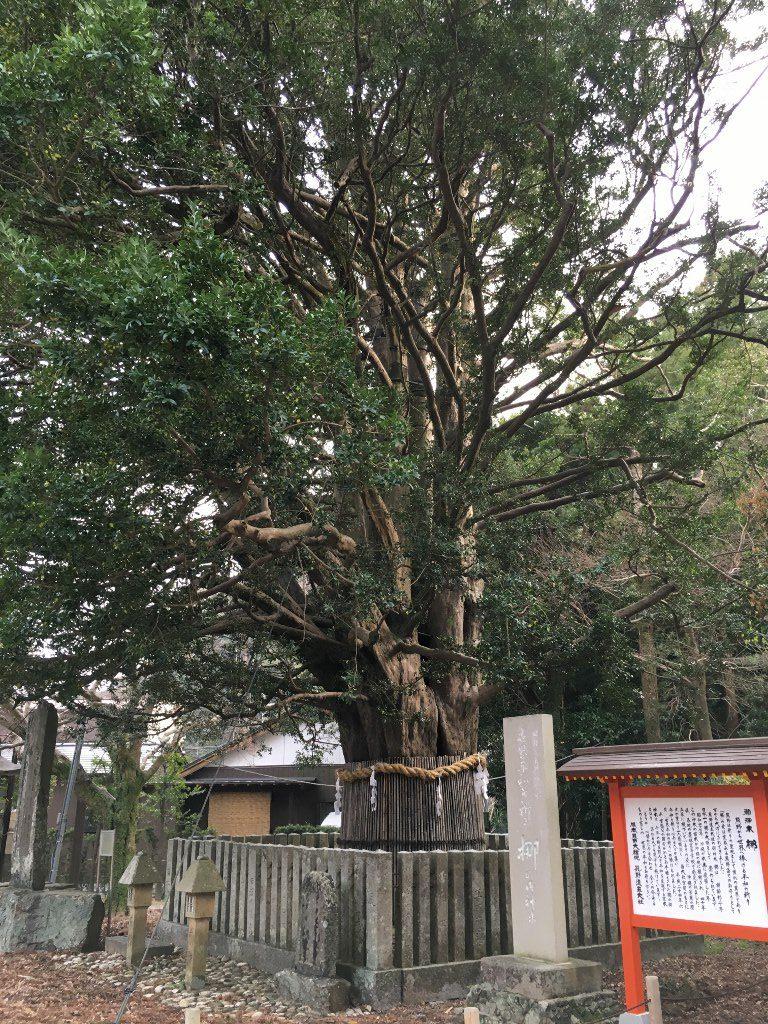 熊野速玉神社 (19)