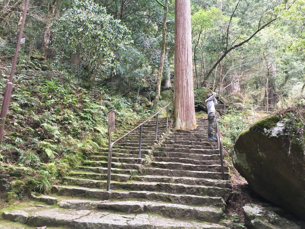那智の大滝 (38) (1024x768)